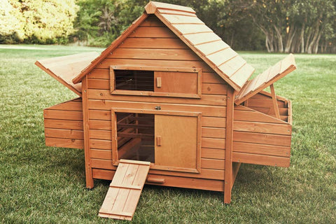 The Rambler chicken coop, with access doors open, revealing 6 nesting areas, mess pans, and roosts