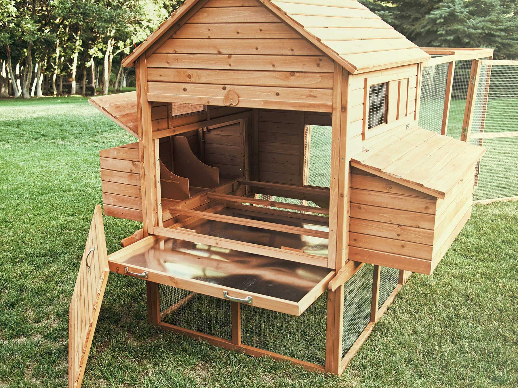 An Interior View Of The Ranch Chicken Coop, Showing Nesting Areas, Mess  Pans,