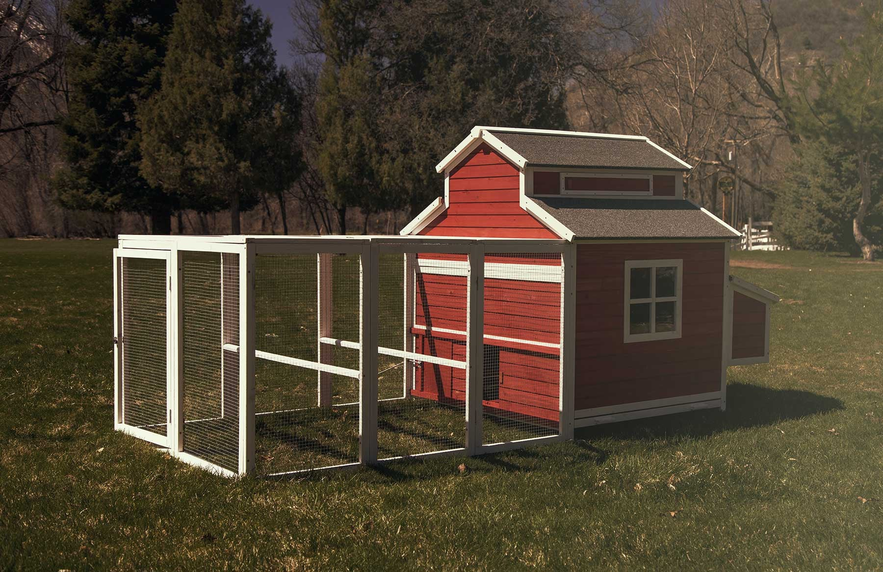 Another side of the Schoolhouse chicken coop, revealing a four-paned window and the traditional red and white schoolhouse paint