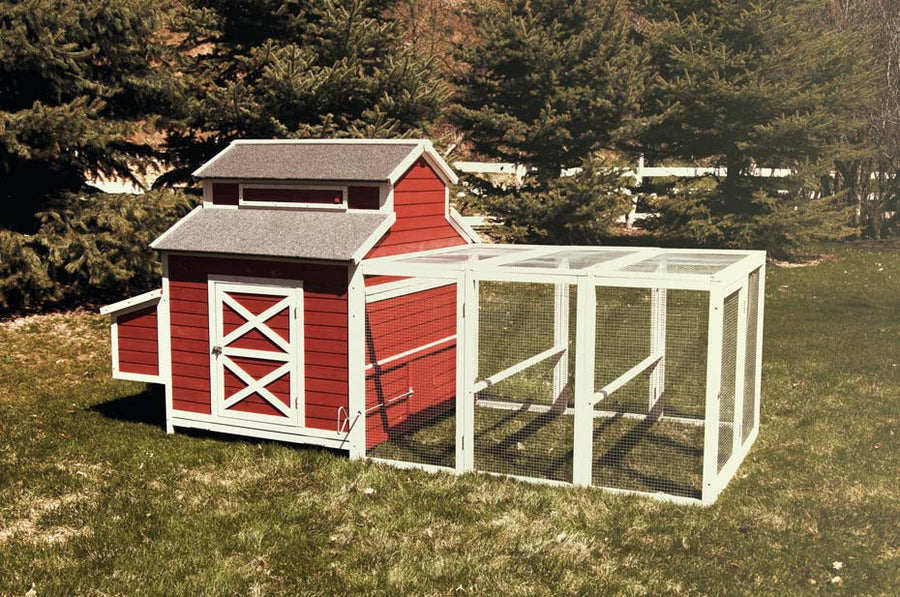 The Schoolhouse chicken coop with 6 foot run, 3 nesting areas, and large living area