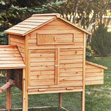 A completed chicken coop