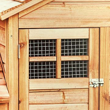 closeup of a window with chicken wire covering the openings in a small wooden door