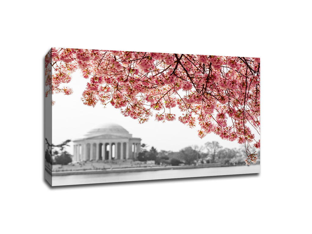 Cherry Blossoms over Jefferson Memorial Touch of Color Canvas