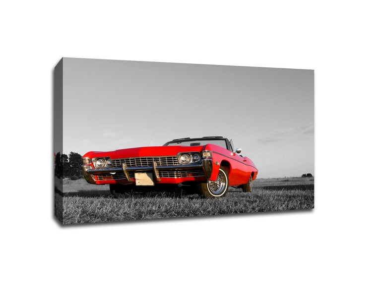 Red Convertible Touch of Color Canvas