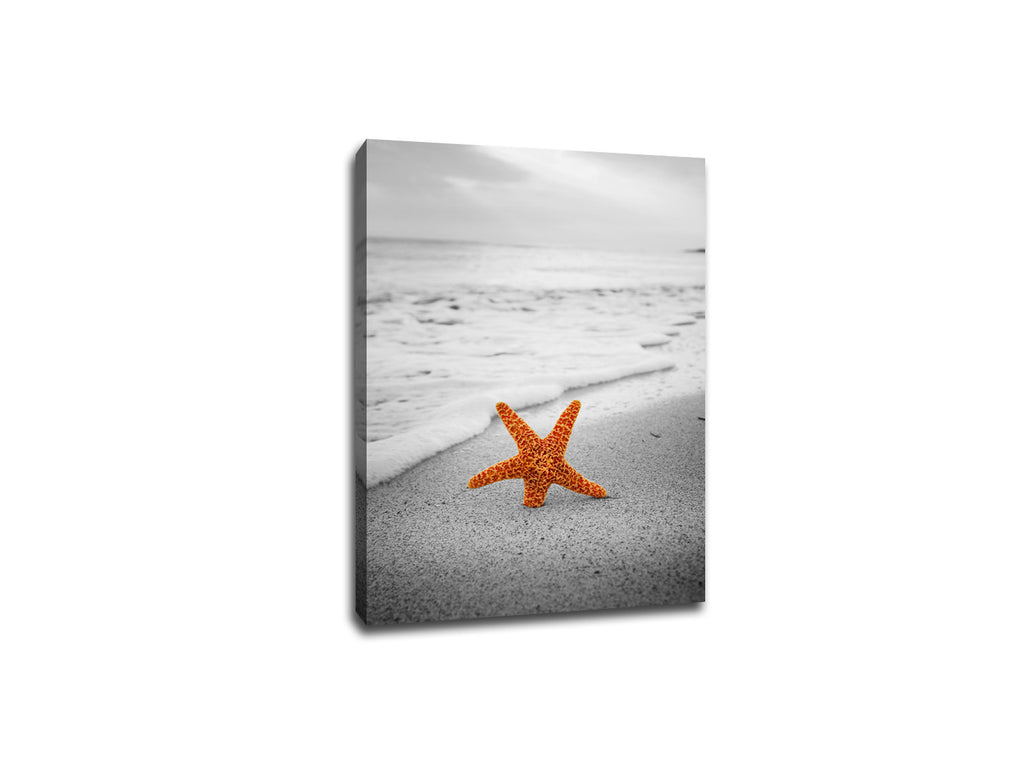 Starfish on The Beach Touch of Color Canvas