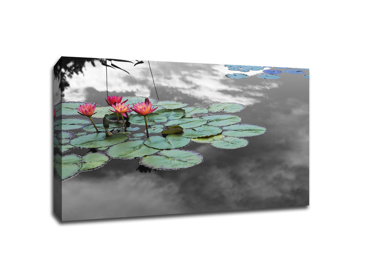 Water Lilies Touch of Color Canvas