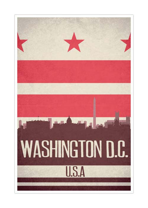 Washington DC State Flag Skylines Matte Poster