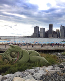 BROOKLYN BRIDGE PARK NAP