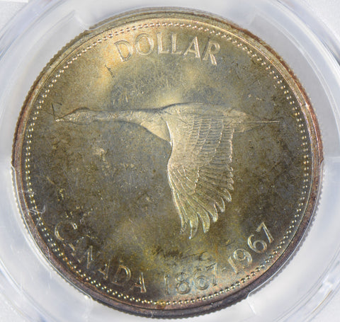 Canada 1967 Dollar silver PCGS MS64 stunning blue golden toning PC0299 combine s