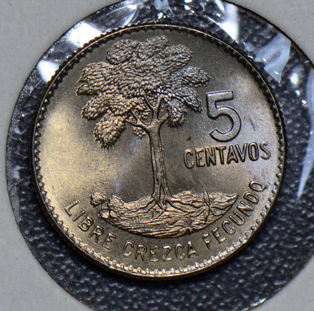 Guatemala 1965 5 Centavos bird animal Gem BU tree G0041 combine shipping