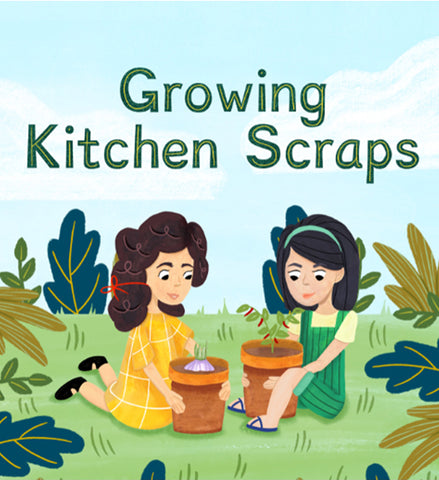 Growing Kitchen Scraps