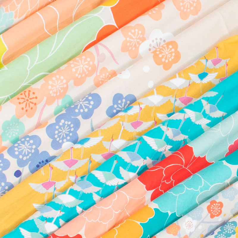 100 Hime Musubi Adeline Klam | Japanese Apricot   Light Orange/Mint