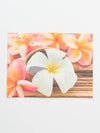 ALOHA Photo Placemat-Kitchen Goods-Ametsuchi