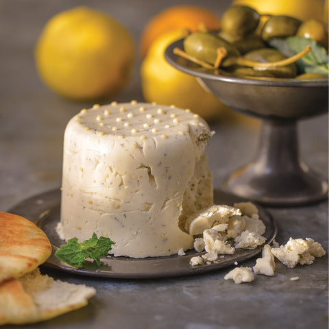 Claudia Lucero author of One Hour Dairy Free Cheese book vegan paleo nut-free cheesemaking feta