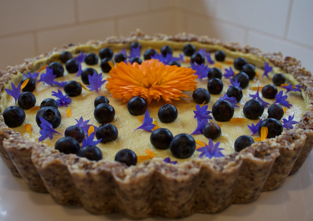 Orange Blueberry Mousse Tart