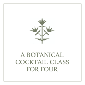 A Botanical Cocktail Class for Four