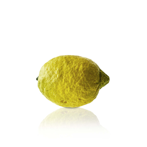 Hand Painted Decorative Lemon
