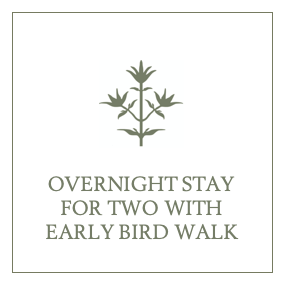 Overnight Stay for Two with Early Bird Walk