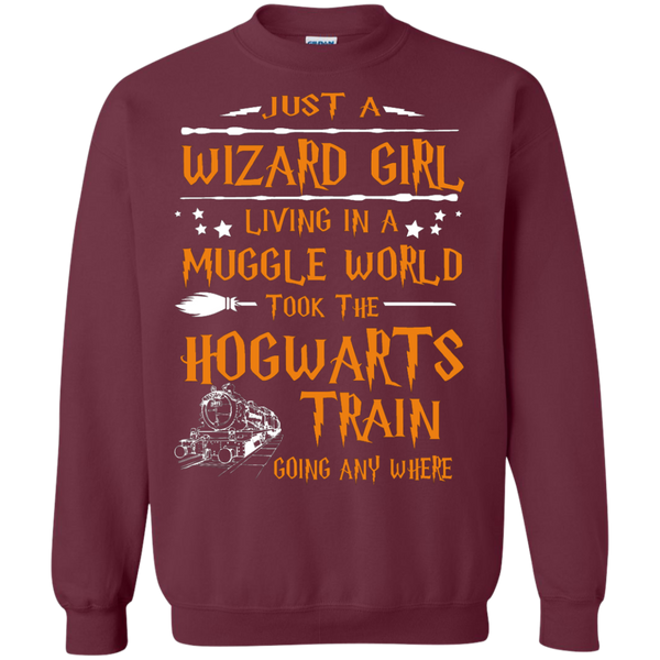 Hogwarts Train - Harry Potter Limited Edition