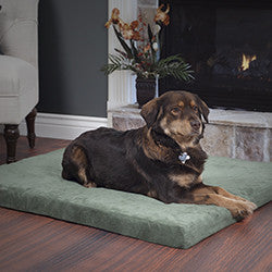 PETMAKER 3 inch Foam Pet Bed-25.5x19 inches-Forest-Algoma