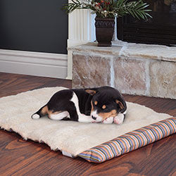 PETMAKER 24x37 inch Roll Up Travel Portable Dog Bed - Coral Stripe-Algoma