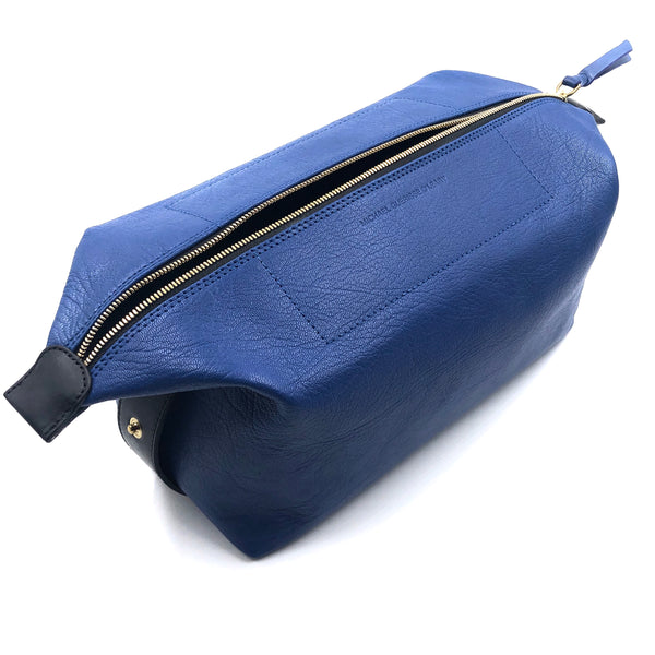 Blue Travel Case