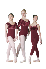 Velvet Bodice Unitard with Thin Straps