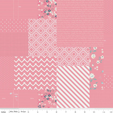 Minki Kim (Zeriano) Someday - Pink Graphic