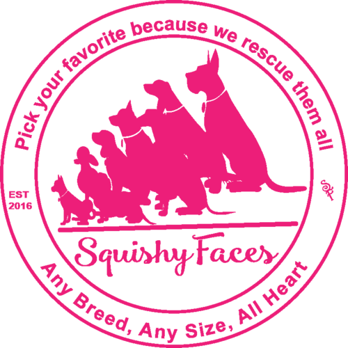 Huge things are happening at Squishy Faces Pet Lover Clothing