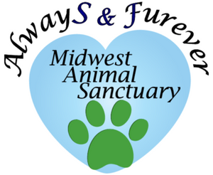 Please help welcome Always & Furever Midwest Animal Sanctuary