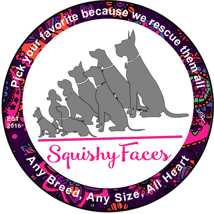 Squishy Faces Pet Lover Clothing