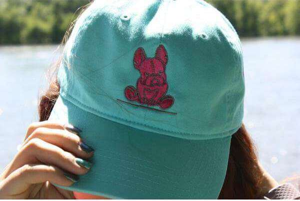 Lagoon blue hat with pink accents new French bulldog