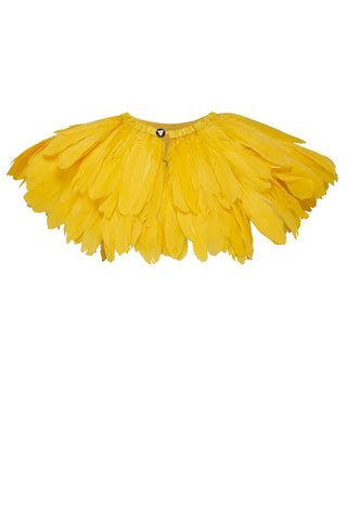 carnival feathers yellow rosa bloom