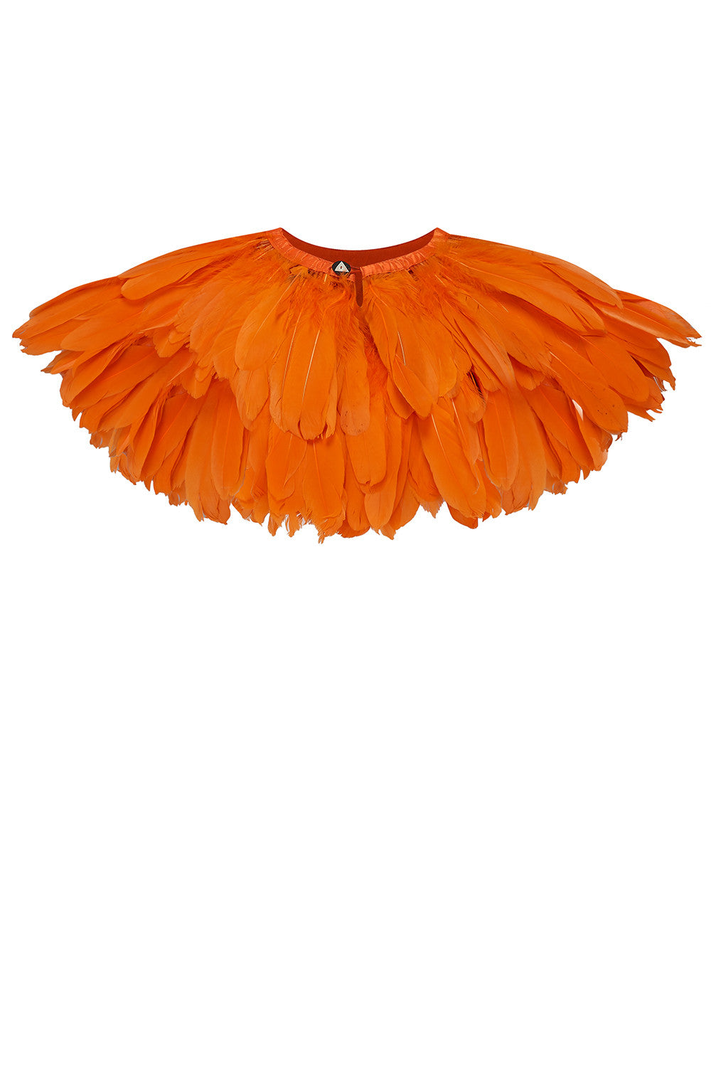 costume feathers tropical rosa bloom