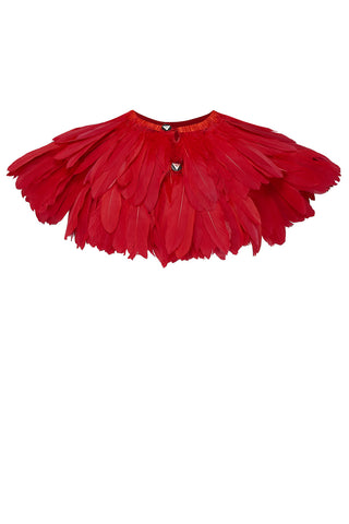 crimson feather cape rosa bloom