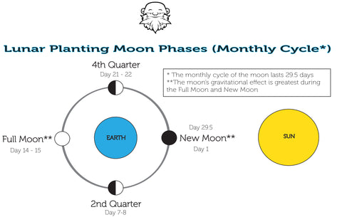 Intro To Growing Cannabis With The Monthly Phases Of The Moon