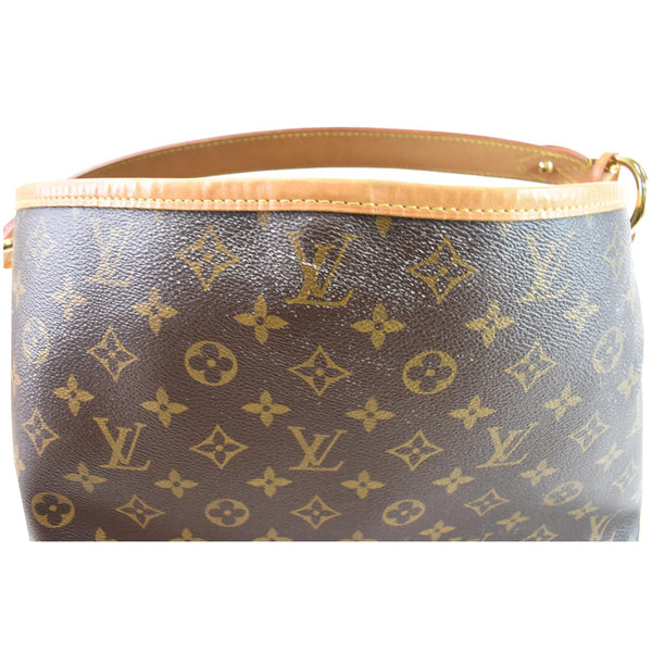 Louis Vuitton Delightful PM Monogram Canvas Pouch