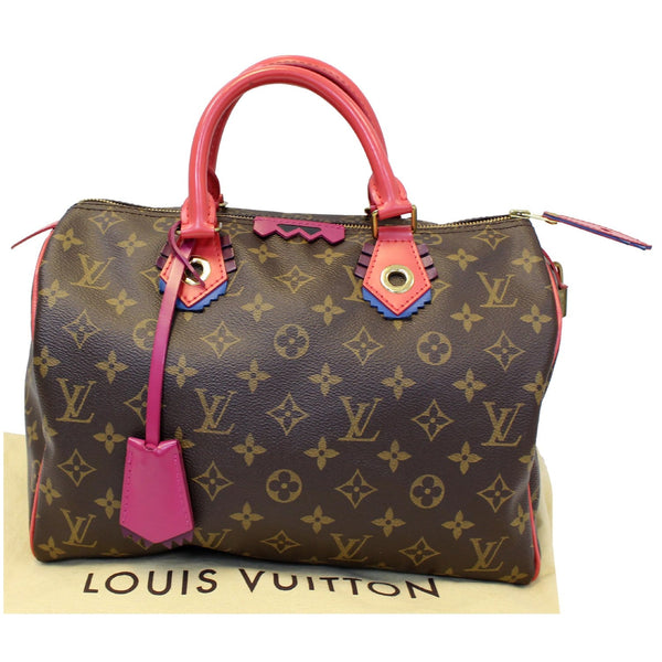 lv Totem Speedy 30 Monogram Canvas shoulder bag