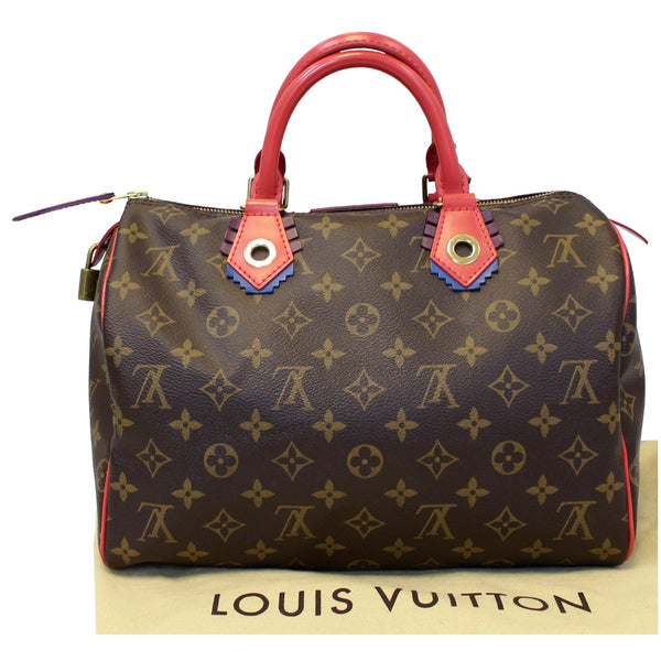 Lv Totem Speedy 30 Monogram Canvas Satchel back view