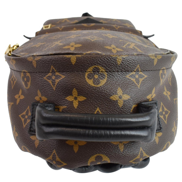 Louis Vuitton Palm Springs PM Monogram Canvas Backpack - top leather handle