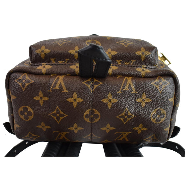 Louis Vuitton Palm Springs PM Monogram Canvas Backpack - bottom view