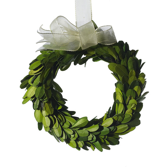 Mini Boxwood Wreath w/ Ribbon