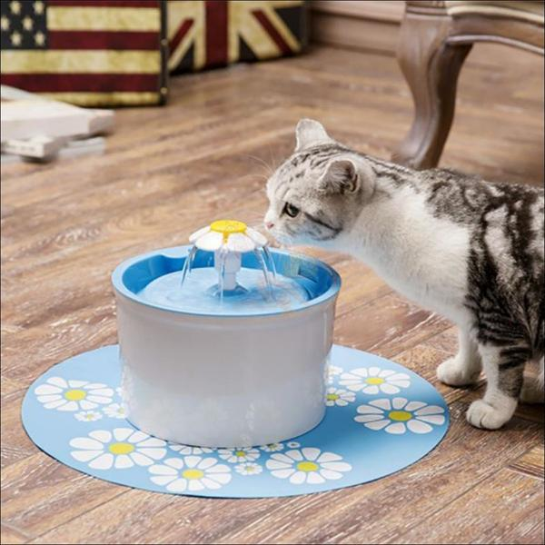 Automatic Cat Water Fountain or Dog Water Fountain blue drinking cat by Blissfactory Pet Supplies