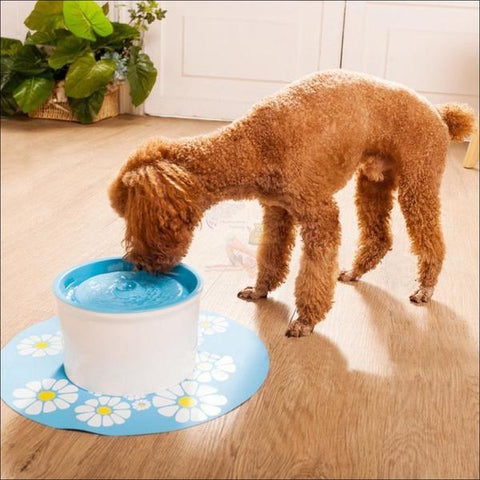 Automatic Cat Water Fountain or Dog Water Fountain blue drinking dog by Blissfactory Pet Supplies