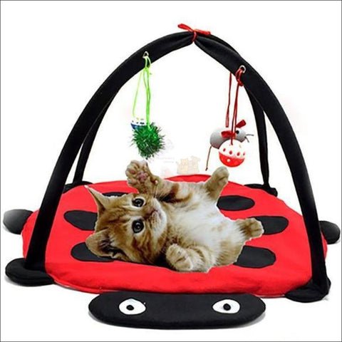 Cat Bed With Cat Toy ladybug heaven by Blissfactory Pet Supplies