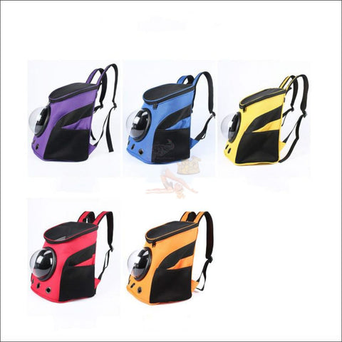 Easylife™ PET CARRIER- best cat carrier or Dog carrier 5 Colors by Blissfactory Pet Supplies