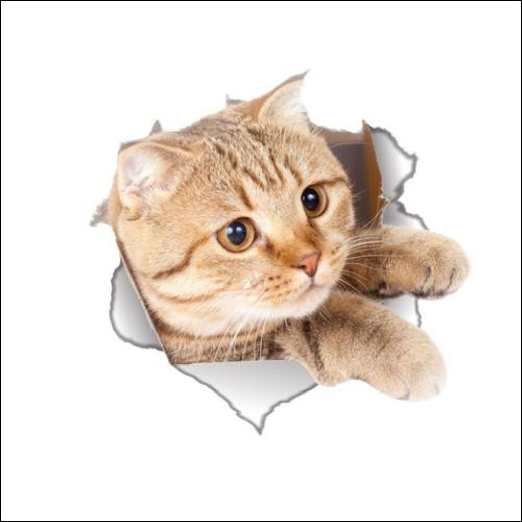 Funny Vinyl Cat Stickers (For Toilet Or Any Other Surface) - Free Shipping! Sticker