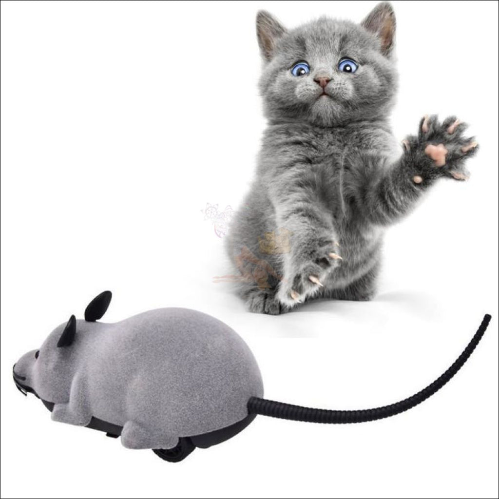 Remote Control Mouse - Best Cat Toys by Blissfactory Pet Supplies