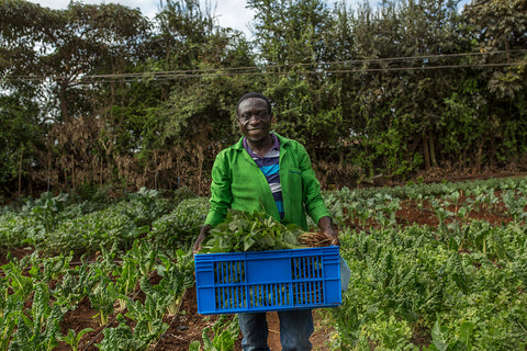 Ben Omandi Love Grows Garden Kibera - Love Is Project