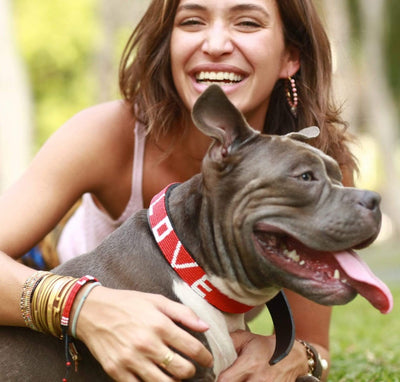 LOVE Pet Collar - Red handmade in Kenya. Glass beaded leather dog collar Love Is Project creates jobs for artisans worldwide. Red Love bracelet seen on Good Morning America and in Oprah magazine